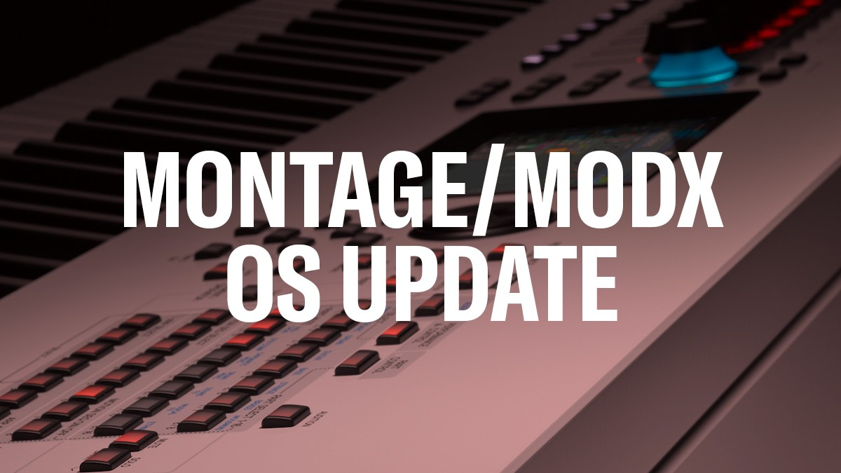 Montage-MODX-OS-Update